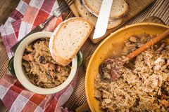 Bigos - μαγειρευμένο λάχανο με το κρέας, τα ξηρά μανιτάρια και το καπνισμένο saus Στοκ εικόνες με δικαίωμα ελεύθερης χρήσης