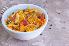 Bigos - stewed cabbage with carrots , smoked sausages and mushrooms, traditional dish of polish cuisine.  stock photos