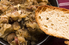 Bigos - traditional polish sauerkraut Stock Image
