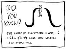 bigote ilustración del vector