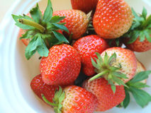 Bigsize jordgubbe Arkivfoton
