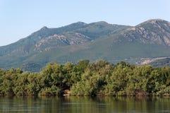 Biguglia laguna w Corsica wyspie zdjęcia royalty free