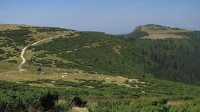 Bihor carst mountains in Apuseni in Romania Royalty Free Stock Photo