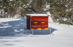 Bihus i snö Arkivfoto