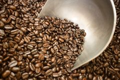 Bij bonen van de markt de Niet geroosterde lichtbruine koffie, metaal scooper royalty-vrije stock afbeelding