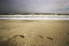 Bij de kust Stock Foto's