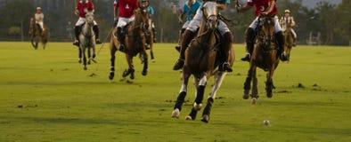 Bij de speler en het paard het spelen van het Nachtpolo Stock Foto's