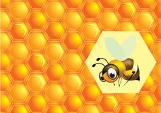 Bij en honing Stock Foto's