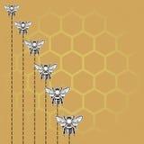 Bij en honingsachtergrond Stock Fotografie