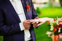 Bij het huwelijk draagt de bruidegom de ringsbruid Stock Afbeeldingen