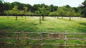 Bij het platteland in België Stock Foto
