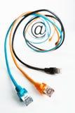 Bij in Internet kabelsspiraal. Royalty-vrije Stock Afbeelding