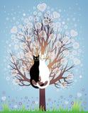 Bij liefdekatten op een bloeiende boom Royalty-vrije Stock Afbeelding