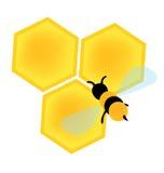Bij op de vector van honingscellen Stock Foto