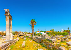 Bij oud Agora van Kos Royalty-vrije Stock Afbeelding