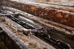 Bij zaagmolen Close-up van hout en ketting stock foto's