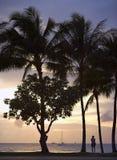 Bij zonsondergang - Strand Waikiki Stock Foto