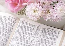 Bijbel Stock Afbeelding