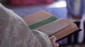 Bijbel in de handen stock videobeelden