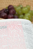 Bijbel en druiven Royalty-vrije Stock Foto's