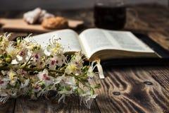 Bijbel en Koffie Royalty-vrije Stock Fotografie