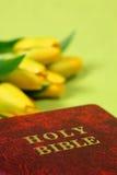 Bijbel en tulpen Stock Afbeeldingen