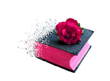 Bijbelboek van bederfeffect voor micro-voorraad stock illustratie