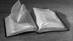 Bijbelpagina's die in de wind in zwart-wit draaien stock videobeelden