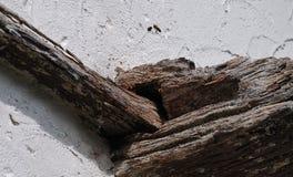 Bijen die bijenkorf in houtbewerking van oud huis ingaan stock fotografie