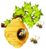Bijen die rond bijenkorf vliegen Stock Foto