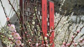 Bijen en bloemen Royalty-vrije Stock Fotografie