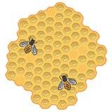 Bijen en honing Stock Afbeelding