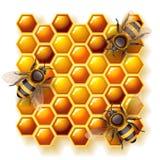 Bijen en honing Stock Fotografie