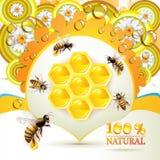 Bijen en honingraten Stock Afbeeldingen