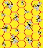 Bijen op honingraten Stock Foto