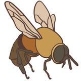 Bijen vectoreps Hand getrokken Crafteroks svg vrij, vrij svgdossier, eps, dxf, vector, embleem, silhouet, pictogram, onmiddellijk stock illustratie