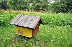 Bijenbijenkorf Stock Afbeeldingen