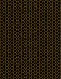 Bijenbijenkorf Royalty-vrije Stock Afbeeldingen