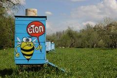Bijenbijenkorf met beeld op het Royalty-vrije Stock Foto's