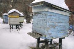 Bijenbijenkorven in de winter Royalty-vrije Stock Afbeelding