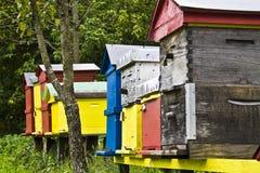 Bijenbijenstal Royalty-vrije Stock Afbeeldingen