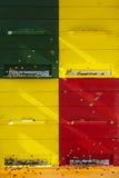 Bijenkorf Stock Foto