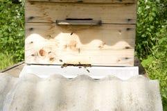 Bijenkorf en de bijen Royalty-vrije Stock Fotografie