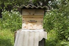 Bijenkorf en de bijen Royalty-vrije Stock Afbeelding