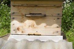 Bijenkorf en de bijen Stock Fotografie