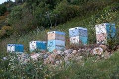 Bijenkorven bij zonsondergang op kust van de Peloponnesus dichtbij het overzees in gree Royalty-vrije Stock Afbeeldingen