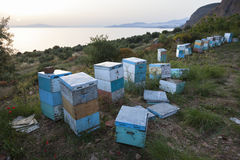 Bijenkorven bij zonsondergang op kust van de Peloponnesus dichtbij het overzees in gree Stock Fotografie