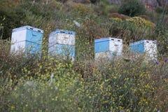 Bijenkorven bij zonsondergang op kust van de Peloponnesus dichtbij het overzees in gree Stock Afbeelding