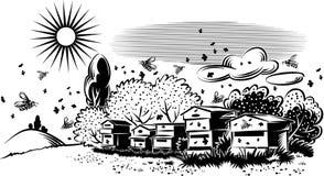 Bijenkorven in een weide vector illustratie