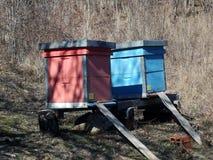 Bijenkorven langstroth-Ruth Royalty-vrije Stock Foto's